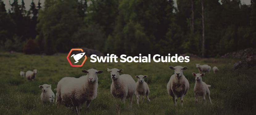 Following Users – A Swift Social Guide